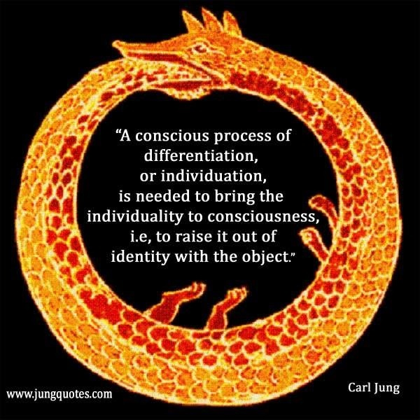 Individuation may be the key